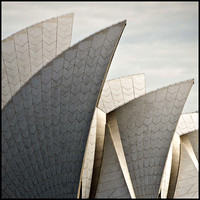 The Sails - Sydney Opera House